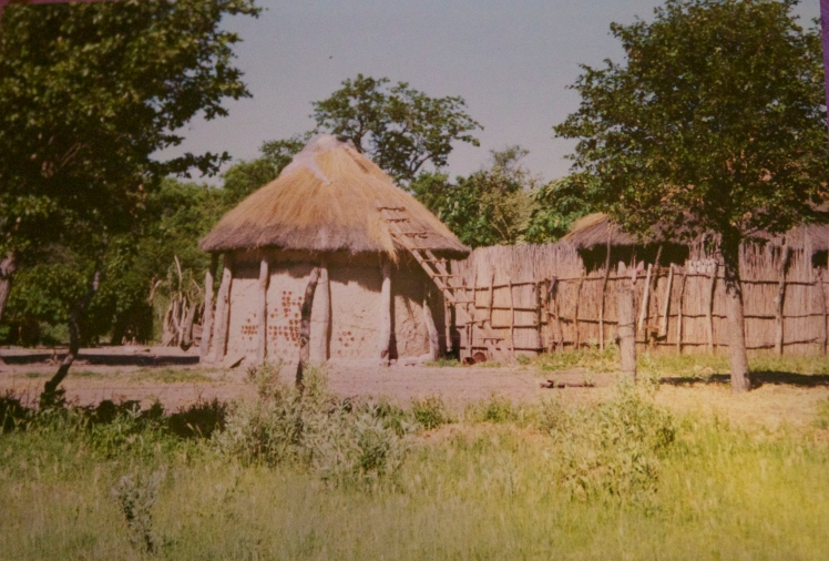 Traditional huts.