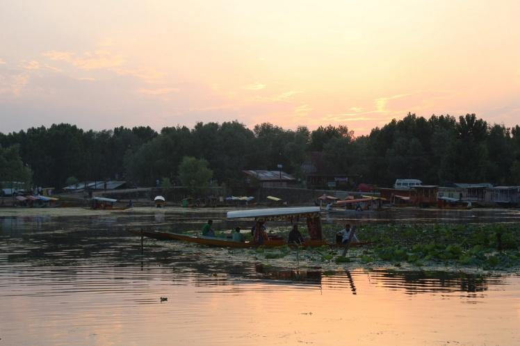 Dal Lake, sunset