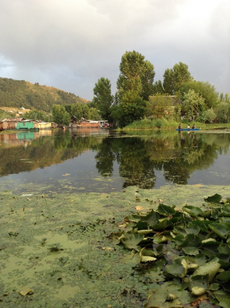 View from 'The Little Mona Lisa' of Dal Lake
